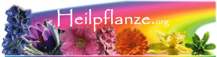 Heilpflanze.org
