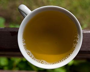 Frischer Brennnessel-Tee