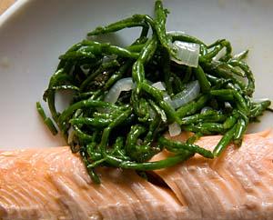 Salicornia als Beilage, gedünstet mit Zwiebel und Öl, dazu Lachs.
