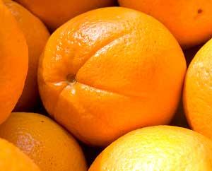 Orangen: Kleine Sonnen
