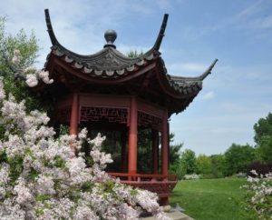 Chinesischer Pavillion mit chinesischem Flieder