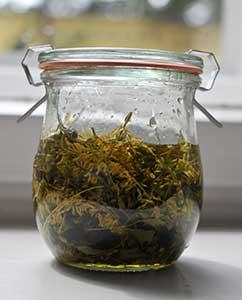 Mit Bio-Olivenöl auffüllen.