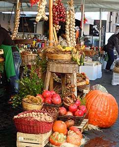 Herbstfrüchte, Heilpflanzen und Kräuter auf dem Campo di Fiori