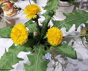 Löwenzahn-Kunstblumen aus Sebnitz