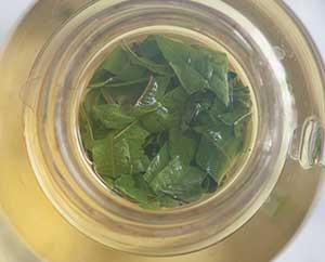 Zitronenverbenen-Tee