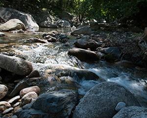 Klarstes Bergwasser