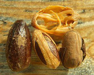 Von links: Muskatnuss-Samenschale, Muskatblüte und die Muskatnuss.