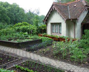 Gemüse-Garten des Vogelwächter-Hauses