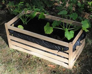 Erde auffüllen, Pflanzen einsetzen - fertig