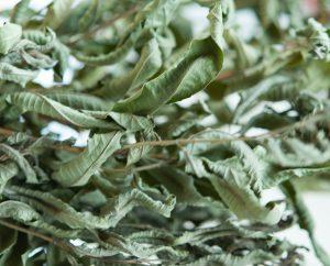 Getrocknete Zitronenverbenen-Blätter