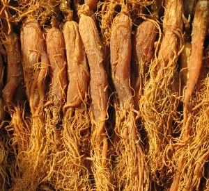Roter Ginseng, Quelle: Archiv KGV, 2018 (Korea Ginseng Vertriebs GmbH, Lohmar)
