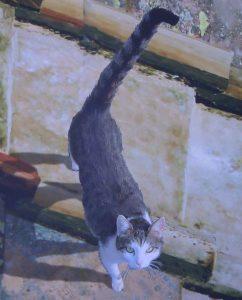 Eine Katze heisst willkommen