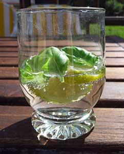 Wasser mit Basilikum und Zitrone