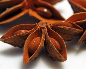 Sternanis-Samen in Taschen